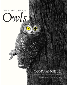 house ofowls