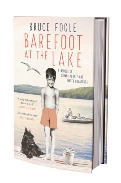 Barefoot at the lake front cover